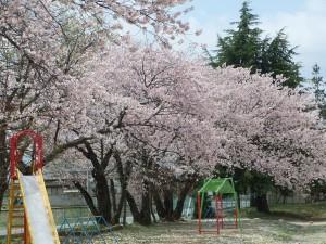 a川中島小学校3