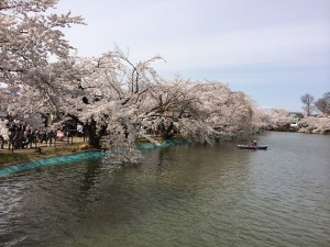 a臥竜公園3